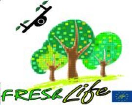 fresh-life-2